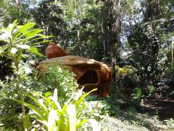 Reproducción roca Puerto Viejo de Talamanca Costa Rica