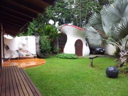 Jardin tropical, terraza delantera con sillon de mosaico, cola de dragon y garaje con forma de seta